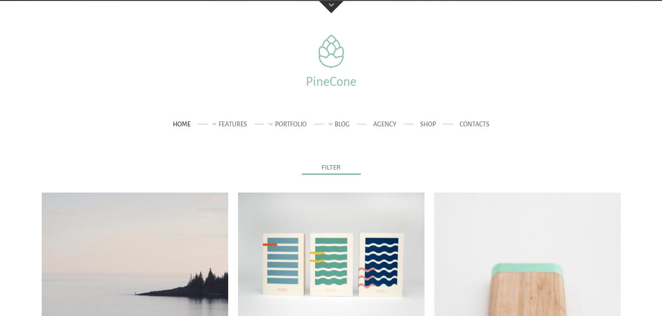 PineCone – Creative Portfolio and Blog for Agency